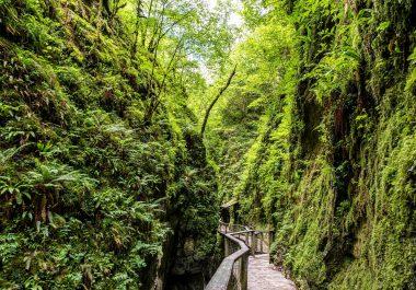 Préparation au Schéma touristique du Tourisme de la C.A. Pays Basque
