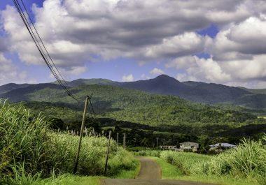 La ville de Lamentin en Guadeloupe, exemple d'un écosystème touristique responsable